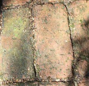 Fugen schmutzig - Die Steinreiniger