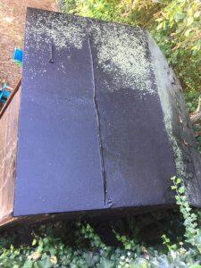 Moos auf Gartendach - DieSteinreiniger